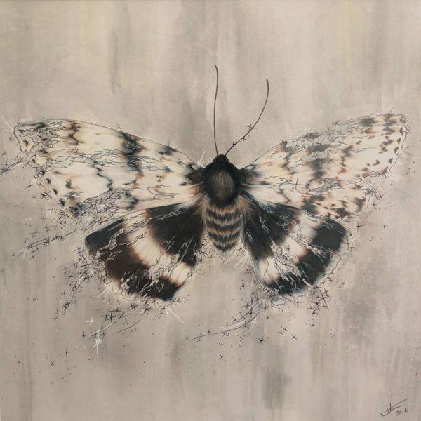 Underwing Moth Art