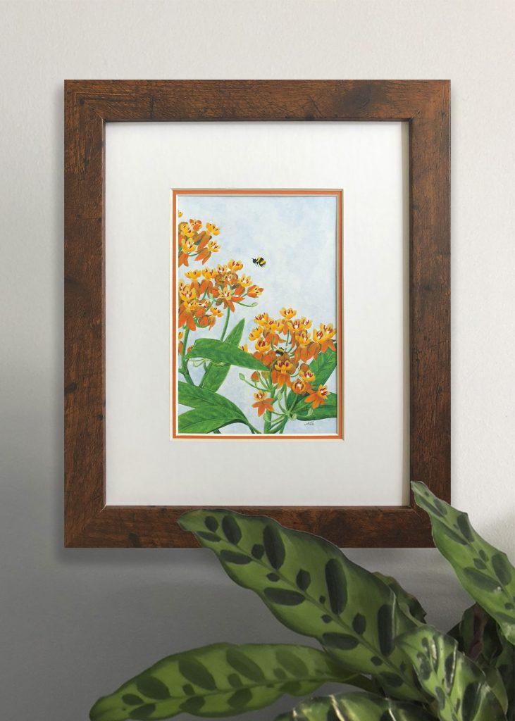 Orange Milkweed Art