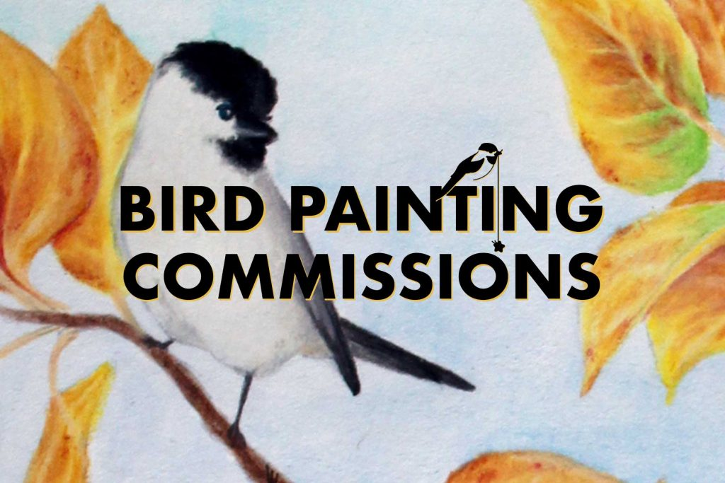 Bird Painting Commissions